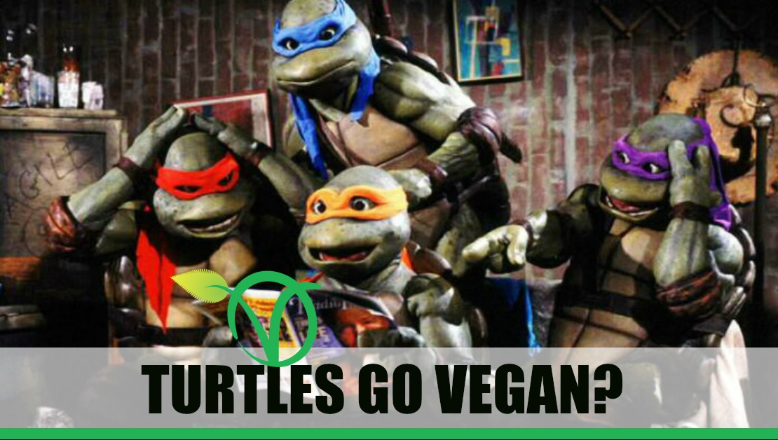 Teenage Mutant Ninja Turtles sollen vegan werden - sagt PETA